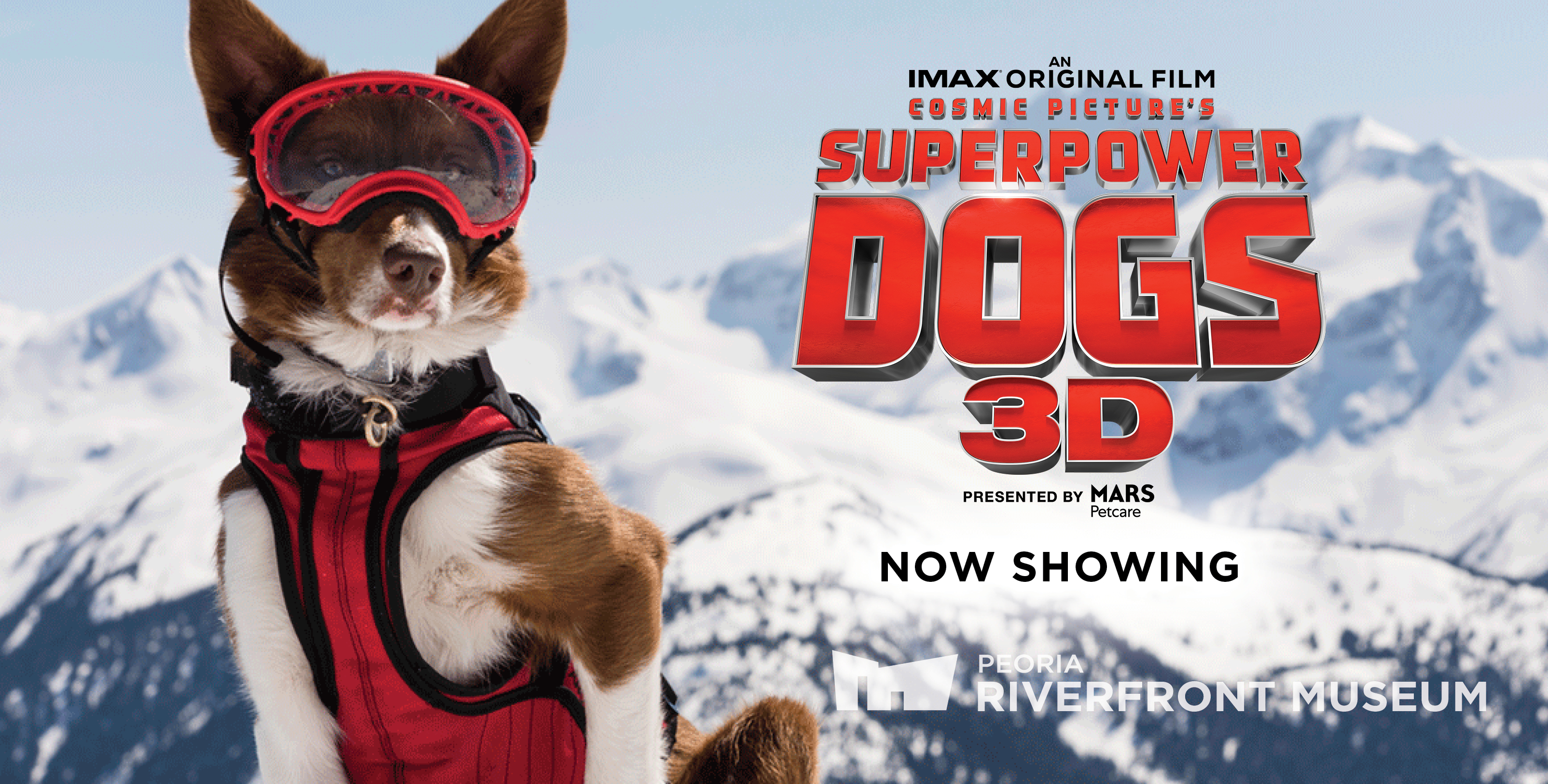 Gst Superpower Dogs Wb Rev1